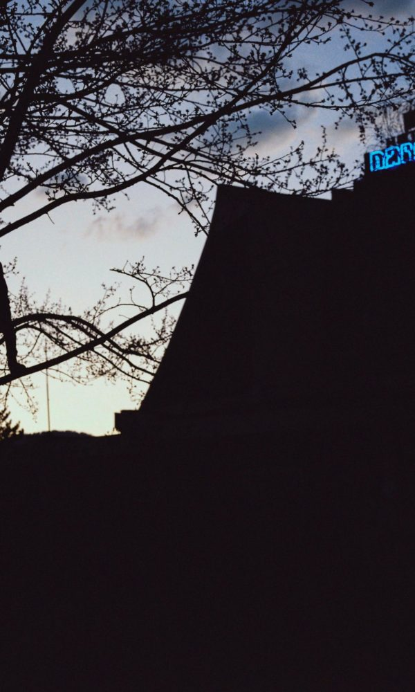 narcis film-press kit-photos carlos blanchard-152 (1)